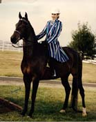 Dutch Dolley Marla 94